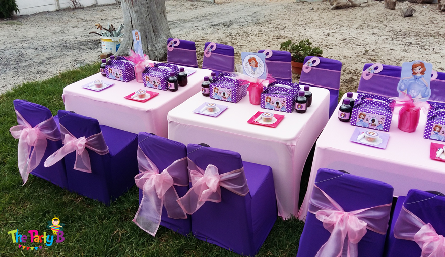 Sofia The First Themed Party Cape Town B